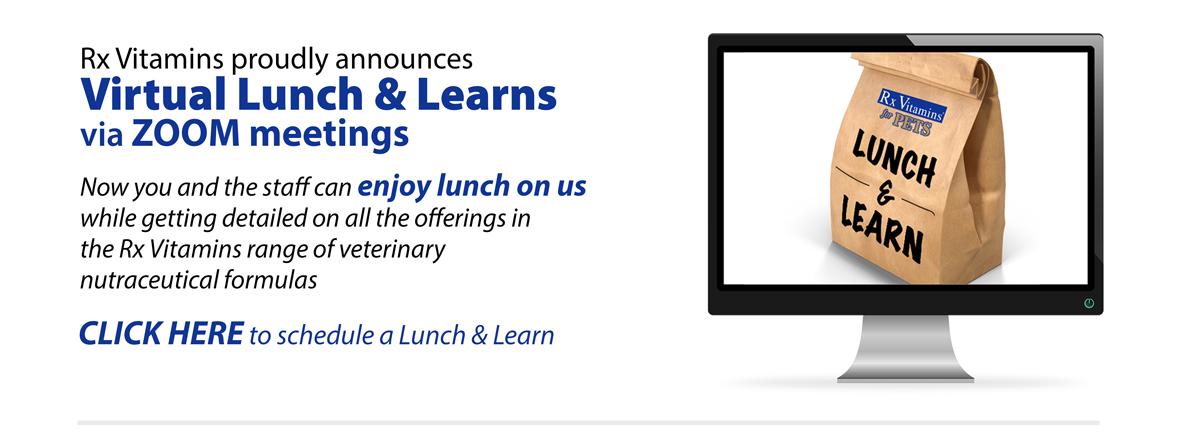 lunch&Learn-Meeting-Slide